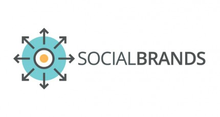 SocialBrands Instagram analizi